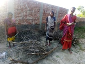 Wood Donation in Bodhgaya, Bihar