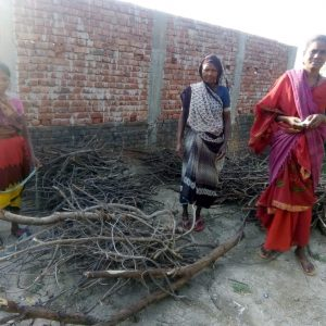 Wood Donation in Bodhgaya, Bihar